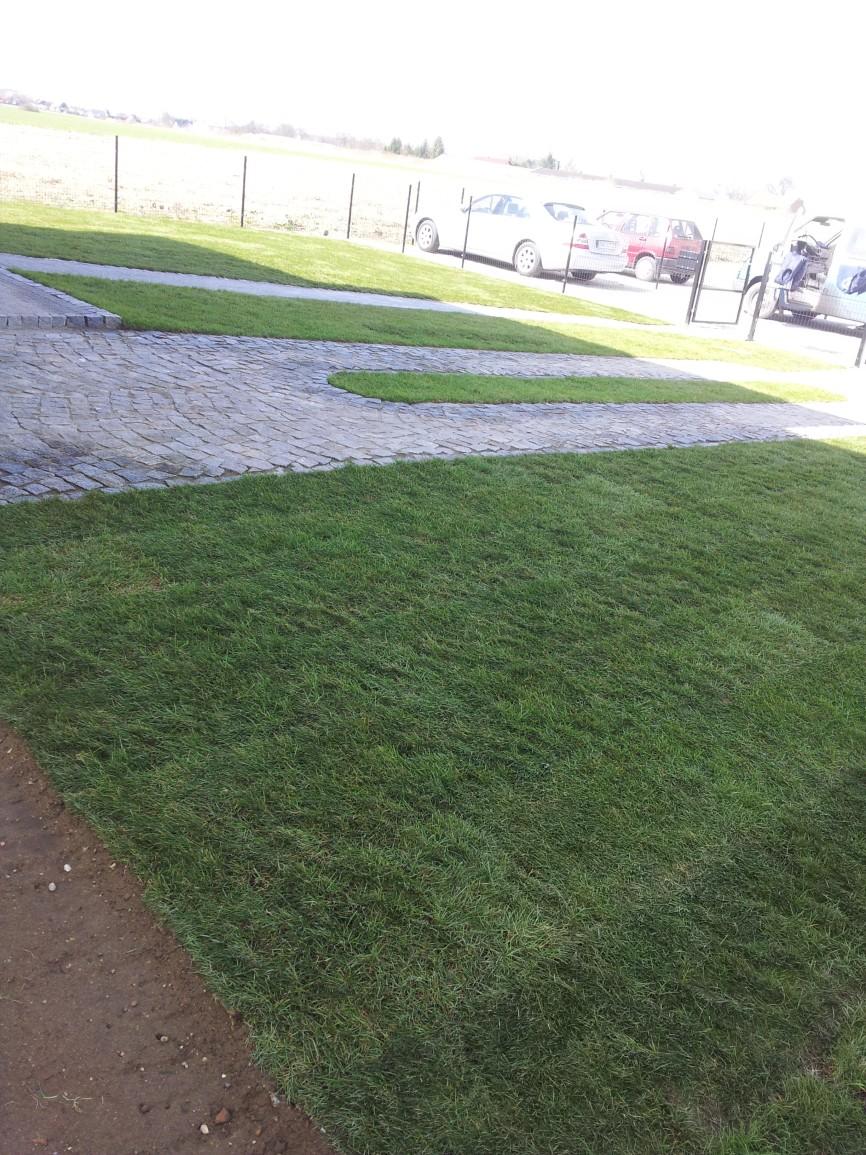 Ogród 2 Trawa Z Rolki
