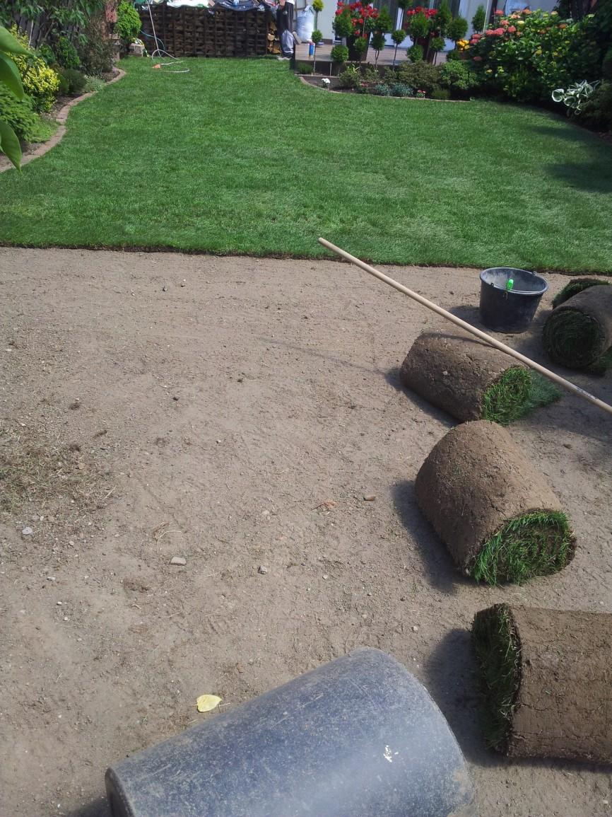 Ogród 6