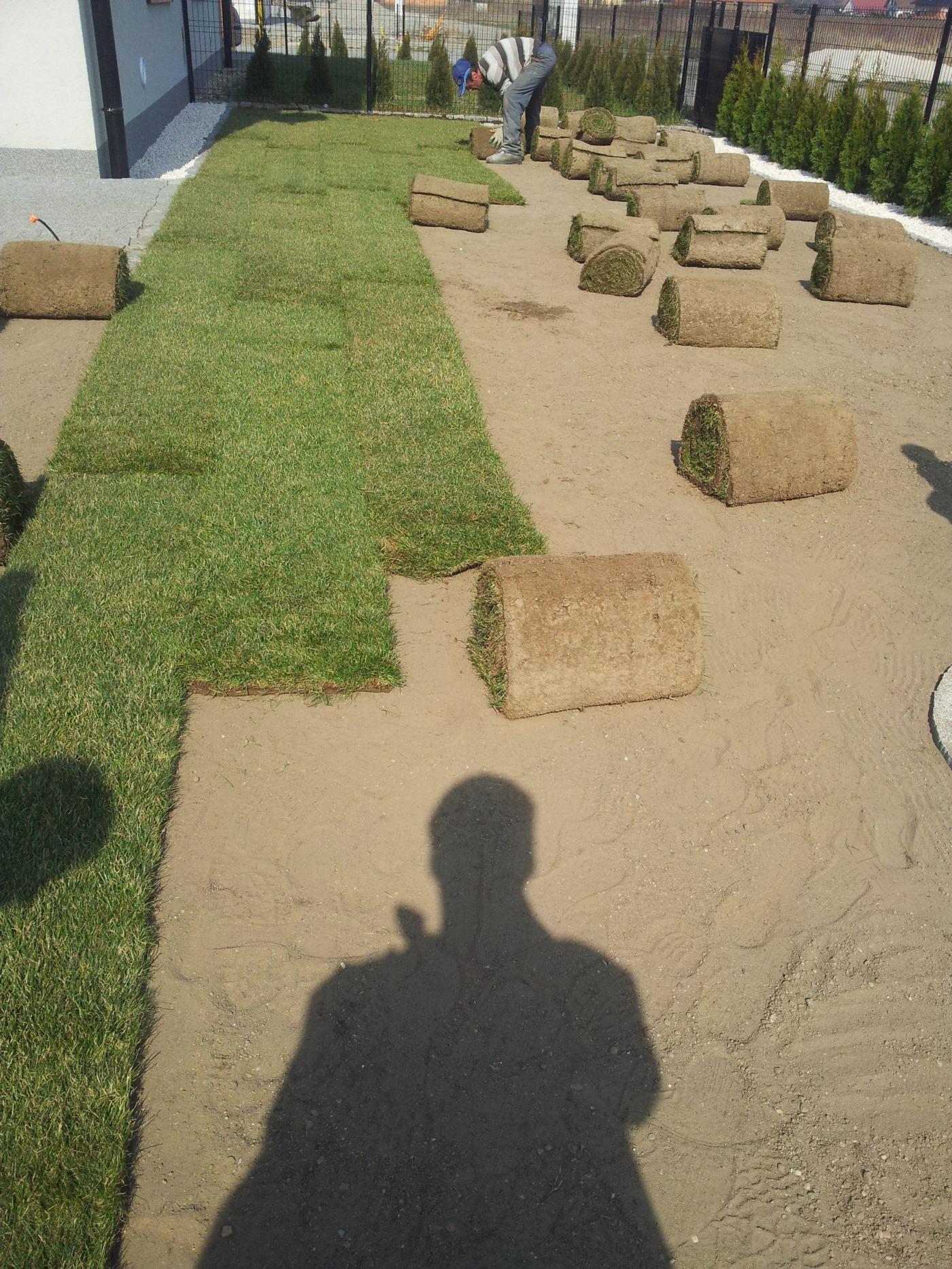Ogród 1 Trawa z Rolki