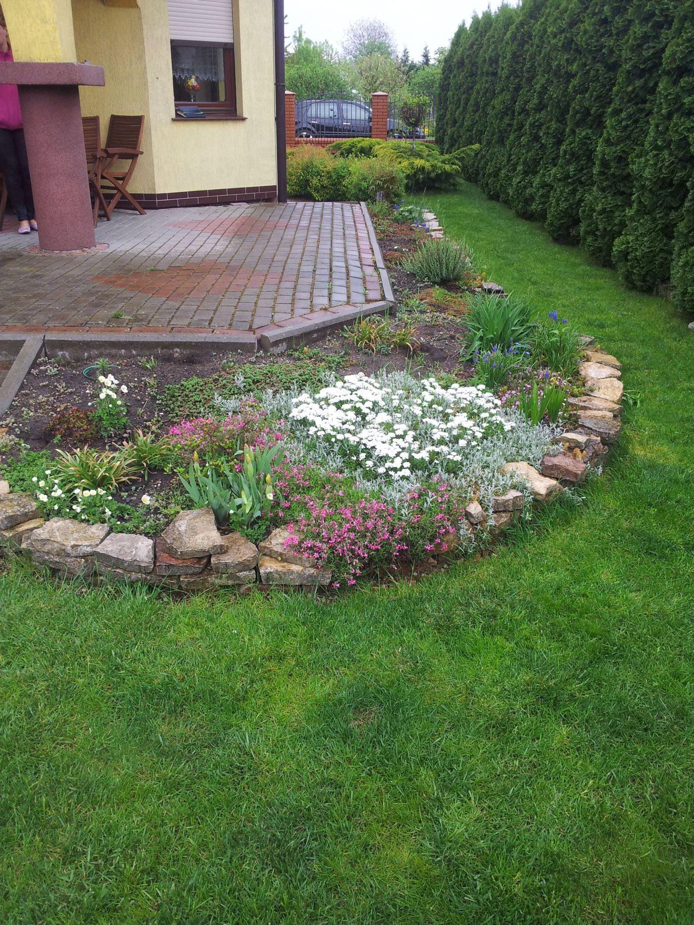 Ogród 4 Przed